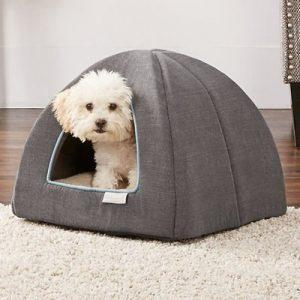 dog bed 300x300 - 3 Ways to Protect Your Pets from EMF Radiation