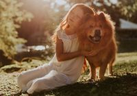 3 Ways to Protect Your Pets from EMF Radiation