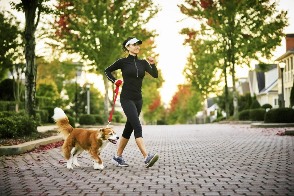 walking shoes 1024x683 - Choosing the Best Walking Shoes for Dog Walkers